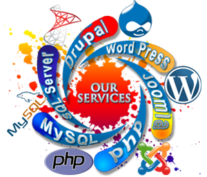 web development company in Thoothukudi