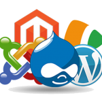 CMS Web Development Company in Tirunelveli